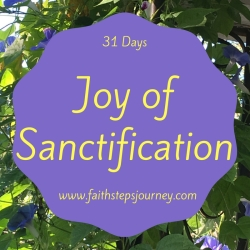 joy-of-sanctification-image