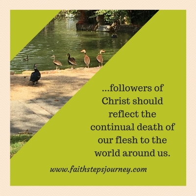 followers-of-christ-should-reflect-the-continual-death-of-our-flesh-to-the-world-around-us