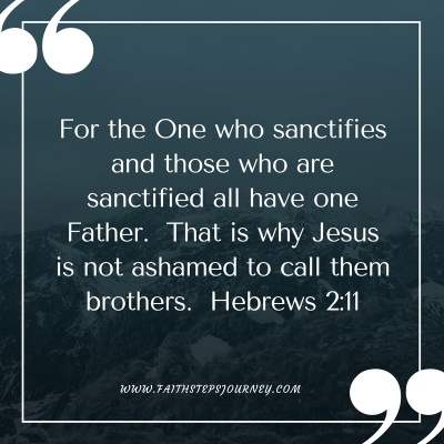for-the-one-who-sanctifies-and-those-who-are-sanctified-all-have-one-father-that-is-why-jesus-is-not-ashamed-to-call-them-brothers-hebrews-2_11