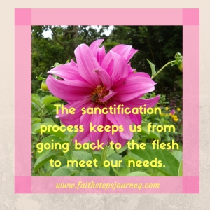 sanctification-meets-needs