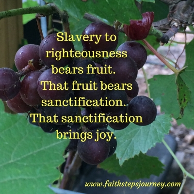slavery-to-righteousness-bears-fruit-that-fruit-bears-sanctification-in-the-life-of-the-believer-that-sanctification-brings-joy-of-assurance-of-eternal-life